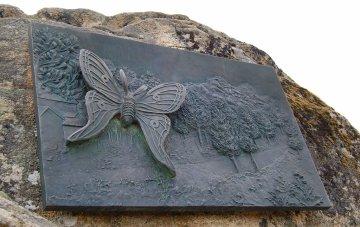 Mariposa Graellsia ISABELAE